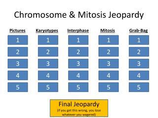 Chromosome & Mitosis Jeopardy