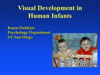 Visual Development in  Human Infants