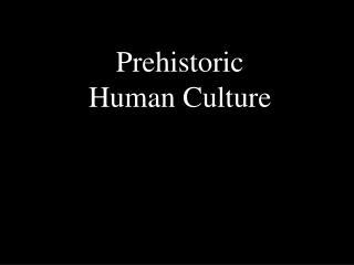 Prehistoric Human Culture