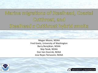 Marine migrations of Steelhead, Coastal Cutthroat, and  Steelhead x Cutthroat hybrid  smolts