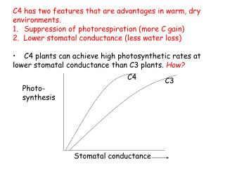 C4 has two features that are advantages in warm, dry environments.