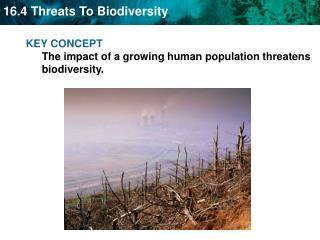KEY CONCEPT  The impact of a growing human population threatens biodiversity.