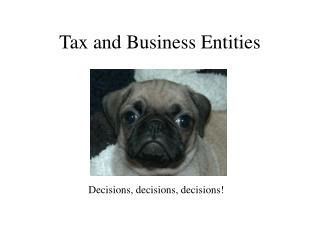 Tax and Business Entities