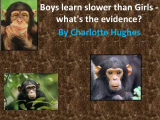 Boys learn slower than Girls -what's the evidence?