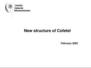 New structure of Cofetel February 2002