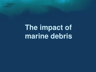 The impact of  marine debris