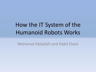 How the IT System of the Humanoid Robots Works