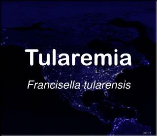 Tularemia