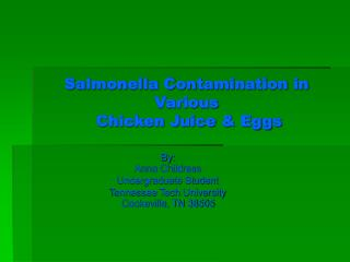 Salmonella Contamination in Various  Chicken Juice & Eggs