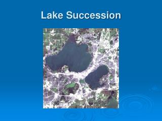 Lake Succession