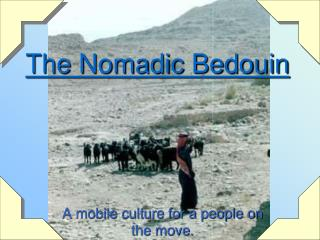 The Nomadic Bedouin
