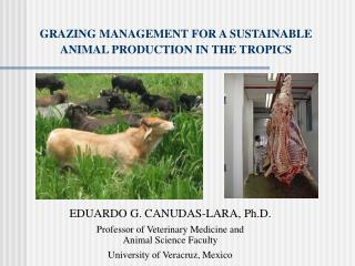 GRAZING MANAGEMENT  FOR A SUSTAINABLE ANIMAL PRODUCTION IN THE TROPICS