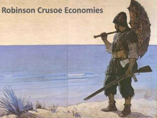 Robinson Crusoe Economies