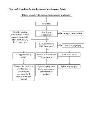 Figure  e-2 : Algorithm for the diagnosis of  arteriovenous  fistula