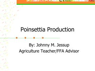 Poinsettia Production