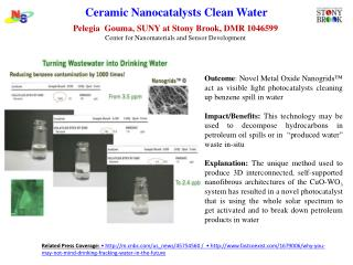 Ceramic  Nanocatalysts  Clean Water
