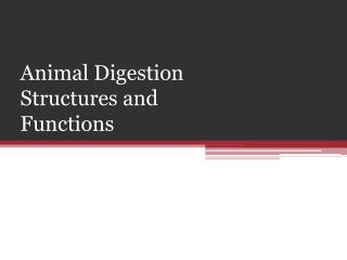 Animal Digestion Structures and Functions