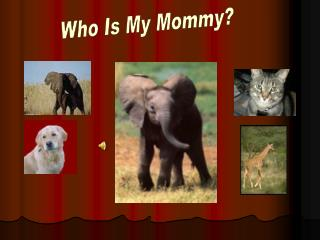 Who Is My Mommy?