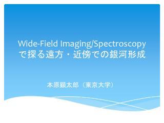 Wide-Field Imagin g/Spectroscopy ??????????????
