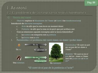 1. Aristòtil 1.2 El problema de la naturalesa: teoria hilemòrfica
