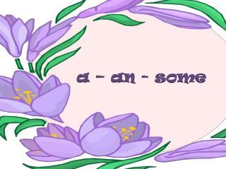 a – an -  some