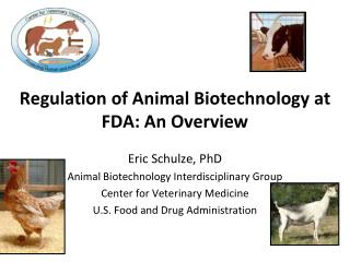 Regulation of Animal Biotechnology at FDA: An Overview