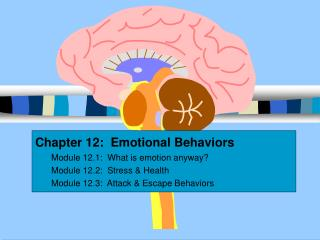 Chapter 12:  Emotional Behaviors Module 12.1:  What is emotion anyway Module 12.2:  Stress  Health Module 12.3:  Attack