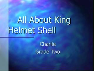 All About King Helmet Shell