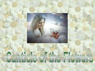 Canticle of the Flowers