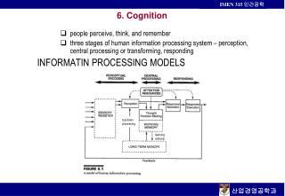 6. Cognition