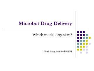 Microbot Drug Delivery