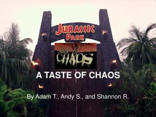 A TASTE OF CHAOS