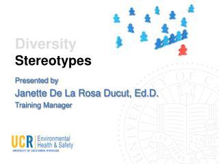 Diversity Stereotypes