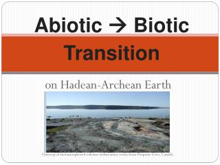 Abiotic    Biotic Transition