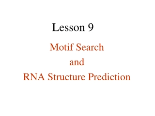 Central Dogma Lesson Plan