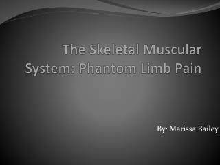 The Skeletal Muscular System:  P hantom  L imb Pain