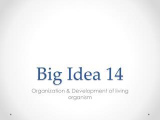 Big Idea 14