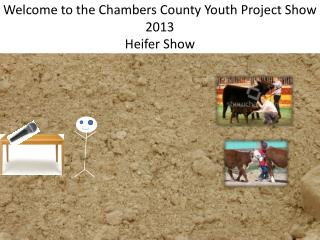 Welcome to the Chambers County Youth Project Show 2013 Heifer Show