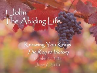 1 John The Abiding Life