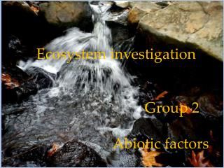 Ecosystem investigation  					Group 2  Abiotic  factors