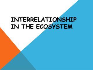 INTERRELATIONSHIP IN THE  ECOSYSTEM