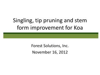 Singling, tip pruning and stem form improvement for Koa