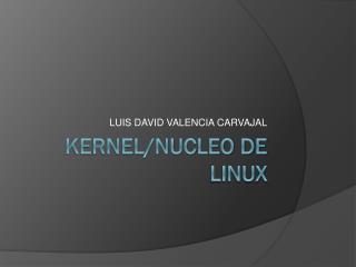 KERNEL/NUCLEO DE LINUX