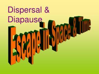 Dispersal  Diapause