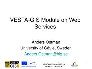 VESTA-GIS Module on Web Services