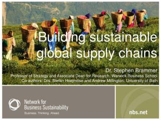 Building sustainable  global supply chains Dr. Stephen Brammer