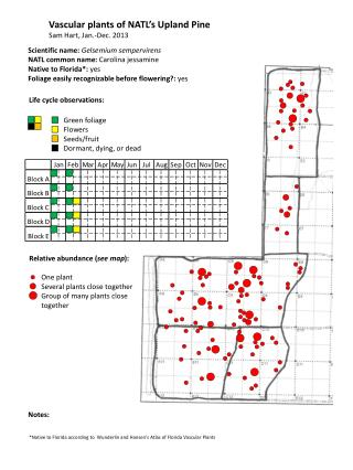 Vascular plants of NATL's Upland Pine Sam Hart, Jan.-Dec. 2013