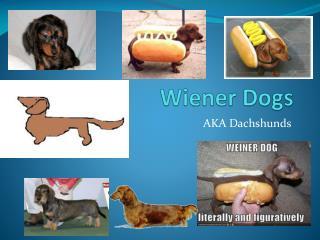 Wiener Dogs