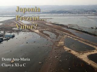 Japonia Prezent … Viitor ?