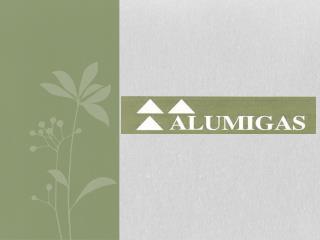 Albañilería y  Carpintería de hierro - aluminio